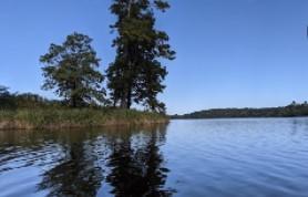 Bringle Lake Park West